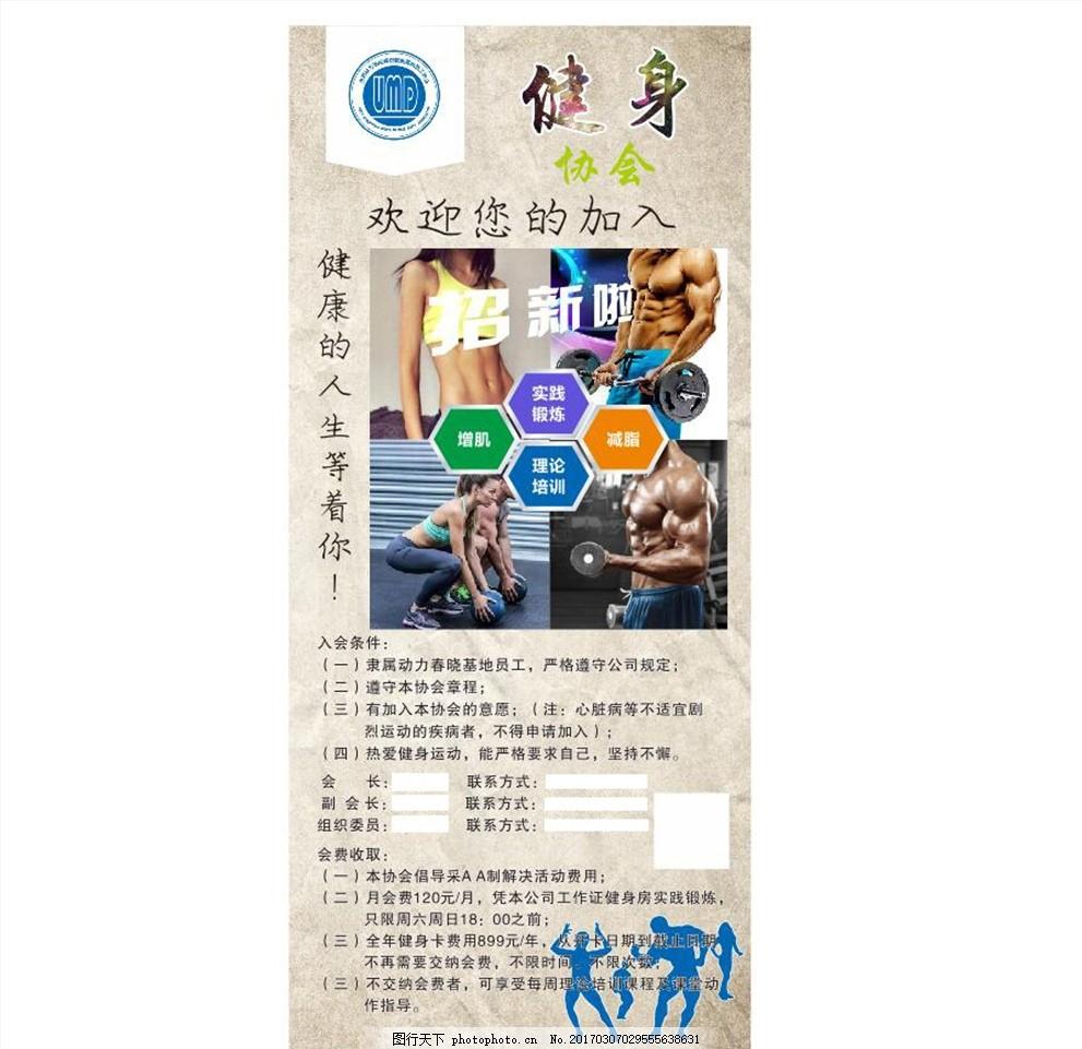 健身协会招新 健身协会 健身协会海报 健身协会易拉 健身协会广告