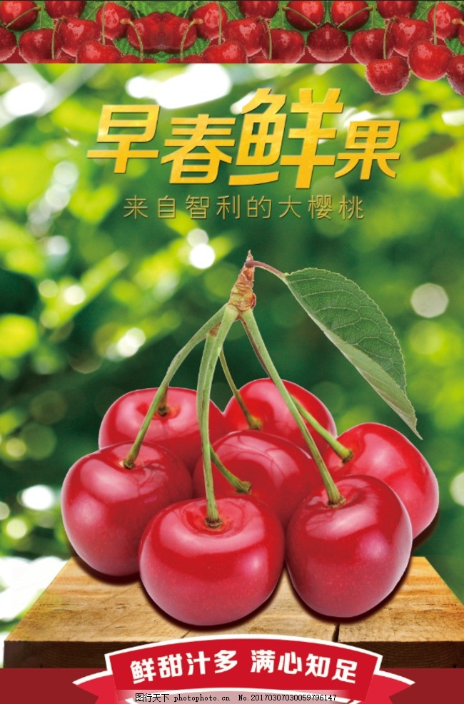 樱桃采摘 宣传海报