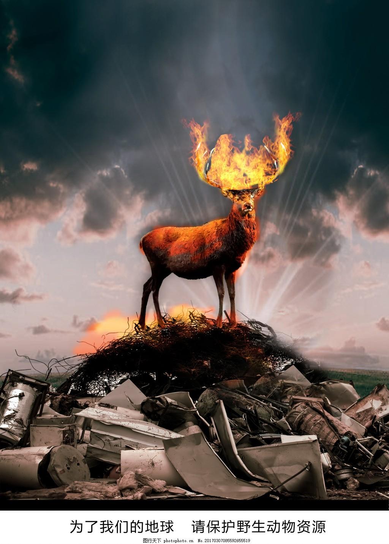 环保爱护野生动物创意海报 环保素材 环保海报 设计图片 创意图片
