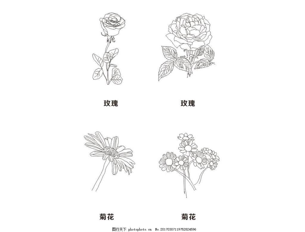 手绘花儿 玫瑰花 线条 矢量花朵