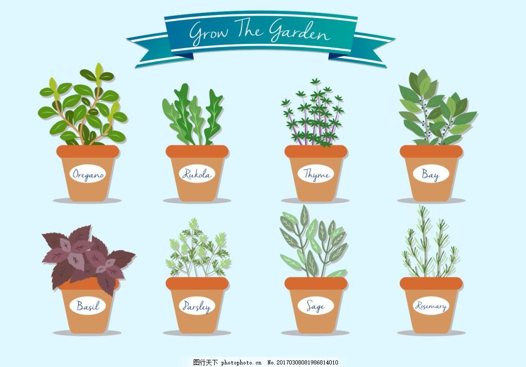 手绘清新植物盆栽