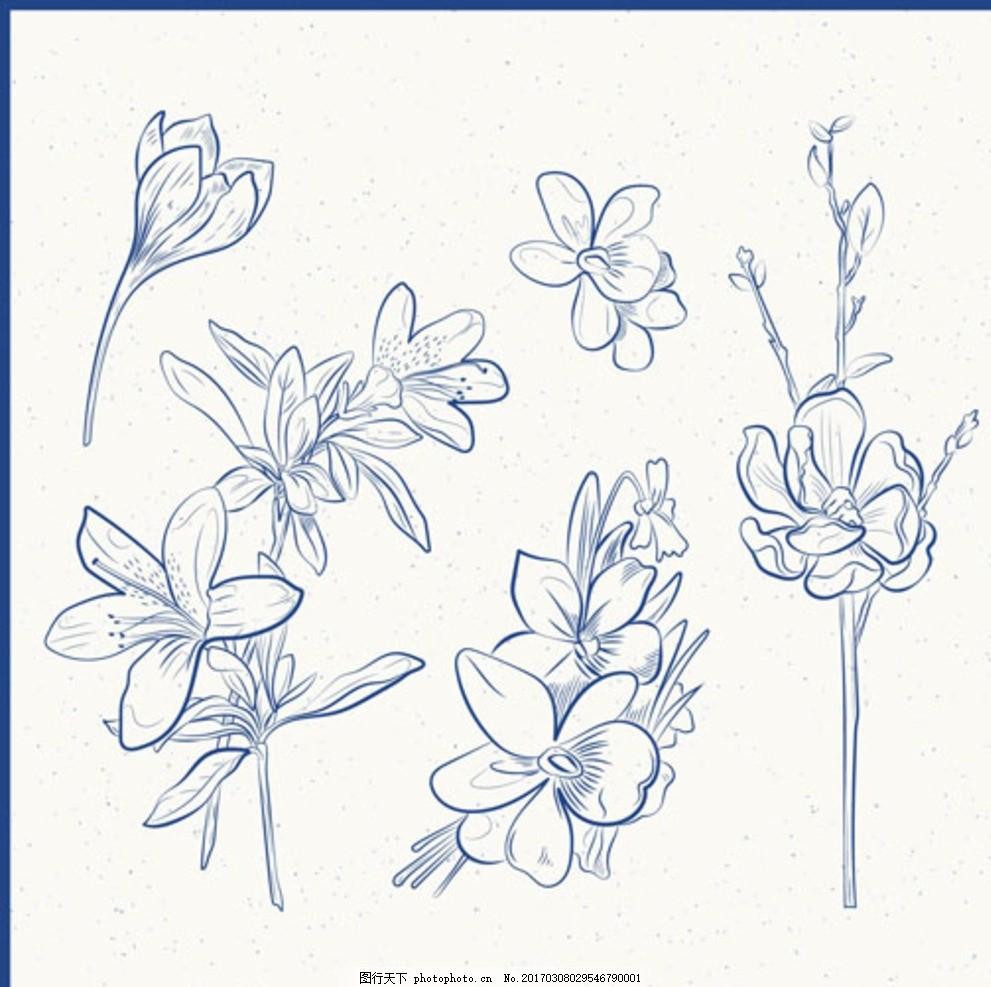 手绘线稿春季花卉花朵