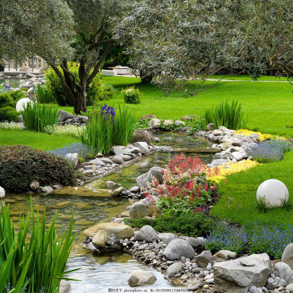 美丽的小溪风景 美丽的小溪风景图片素材 公园风景 小溪景色 自然风景
