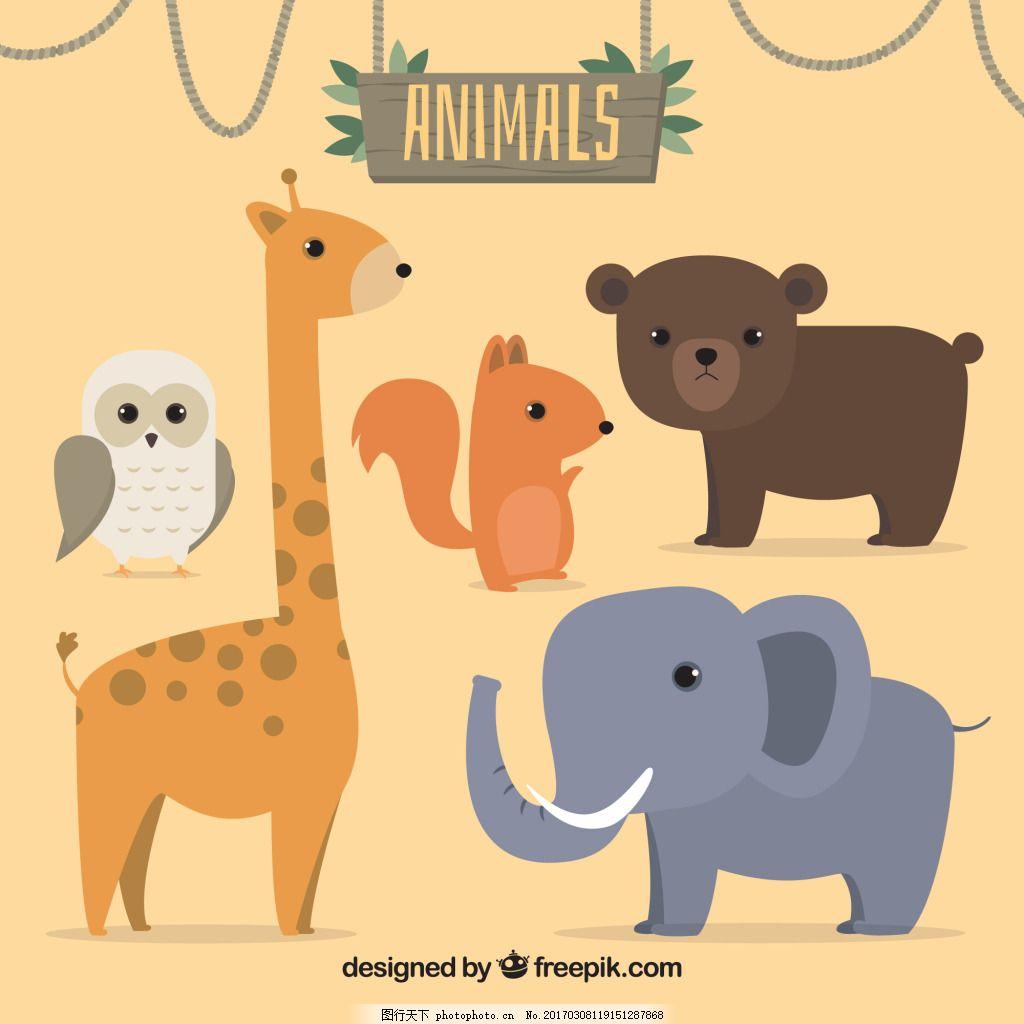 一组野生保护小动物素材