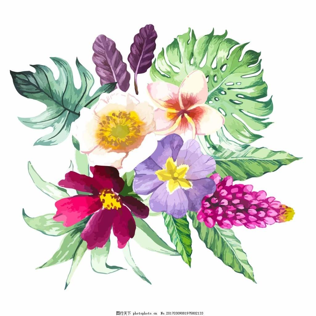 手绘热带植物 花朵 叶子 手绘 热带 植物