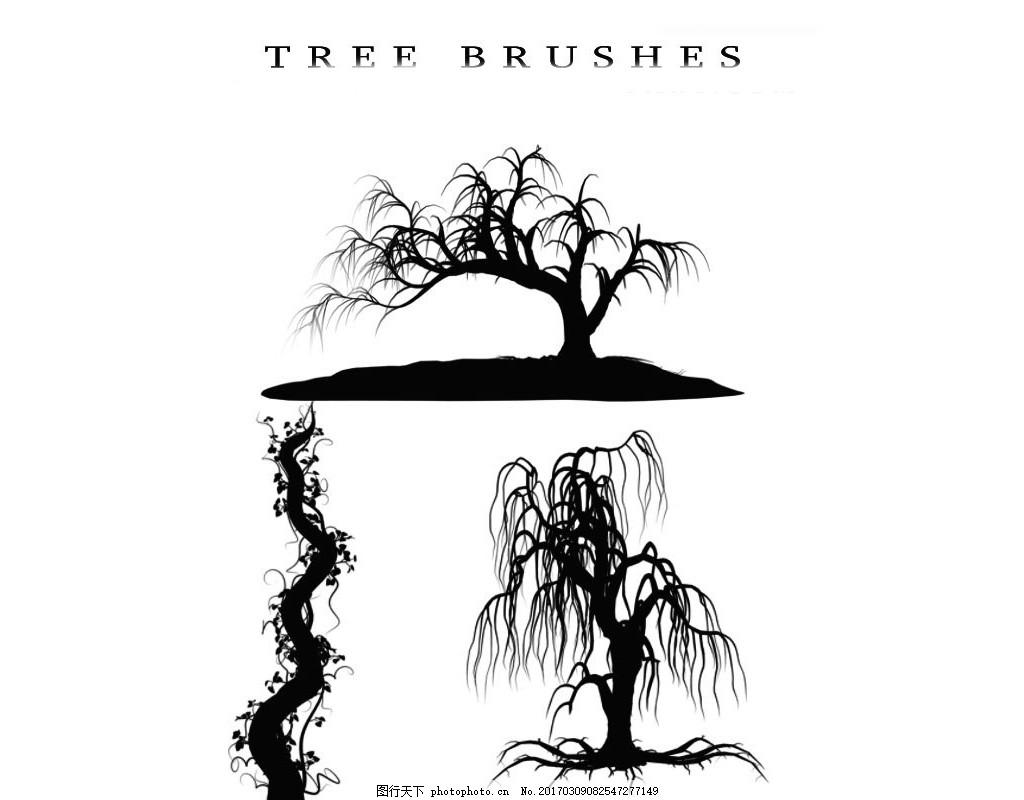 手绘图关于柳树