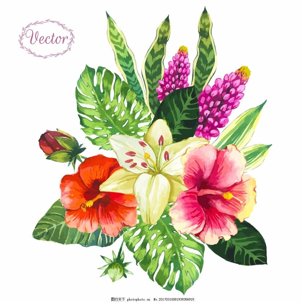 热带植物花朵 手绘 花卉