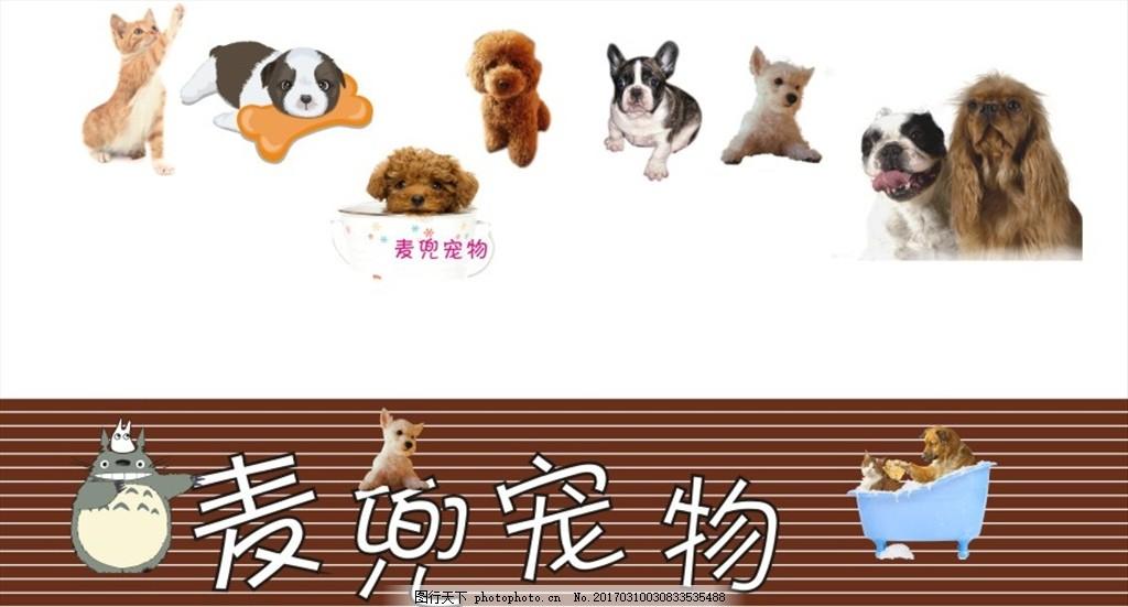 宠物店门面门头广告牌招牌 门面招牌 矢量 原文件 源 动物 室外广告设图片
