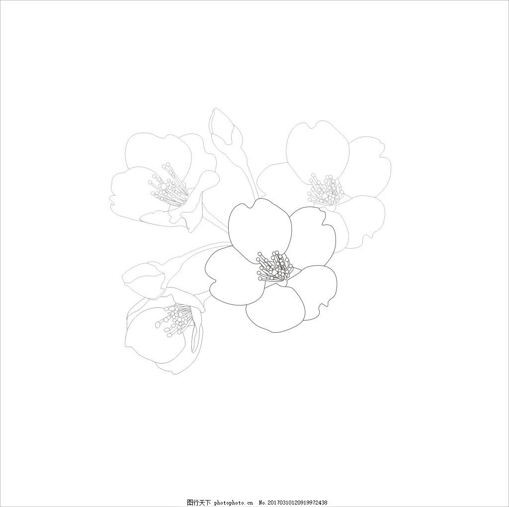 樱花线条图案
