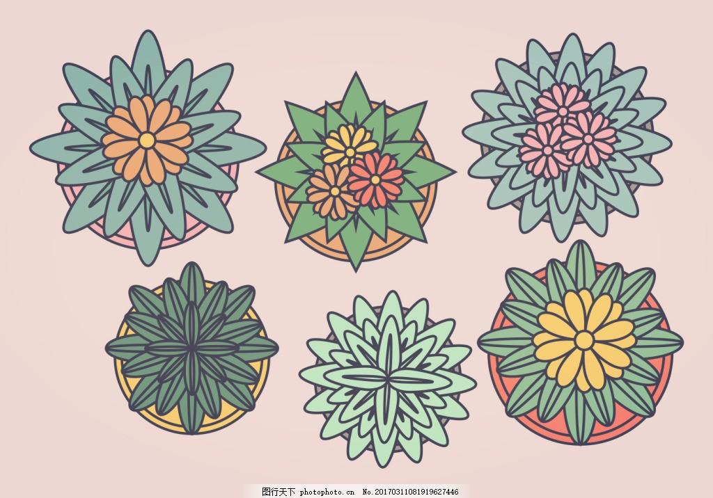 手绘盆栽植物顶视图