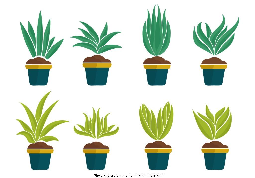 盆栽植物素材 树木 矢量素材 植物插画 手绘植物 叶子 树叶