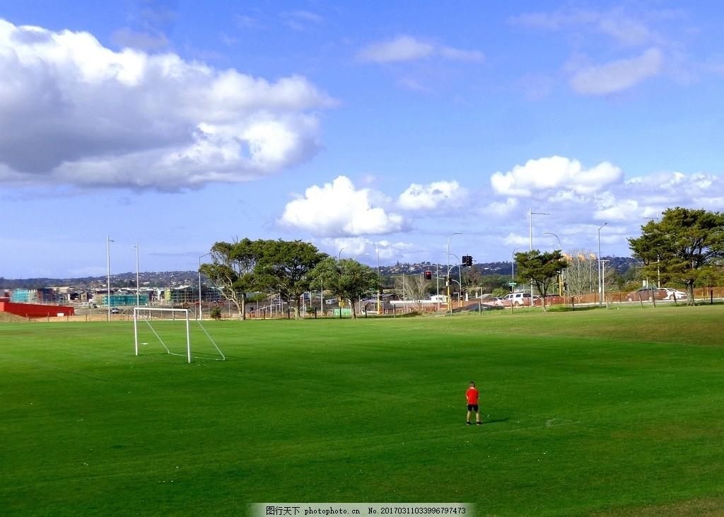 绿树 绿地 草地 儿童 训练 高尔夫球 新西兰风光 摄影 旅游摄影 国外