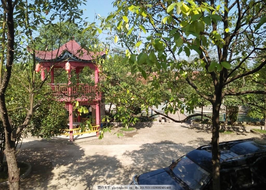 亭台 古代亭台 旅游 风景 人文 摄影 建筑园林 建筑摄影