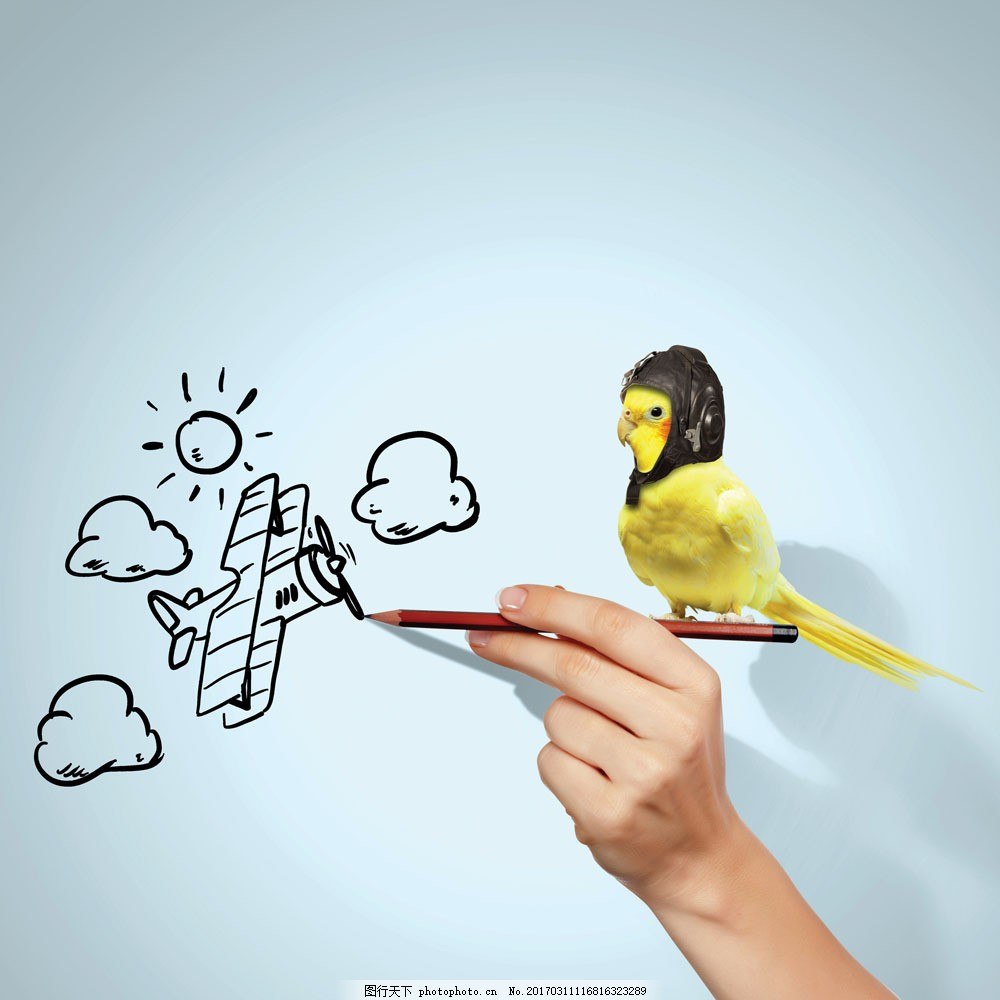 画飞机的手图片素材 画飞机的手 手绘云朵 太阳 铅笔 鹦鹉 其他生物