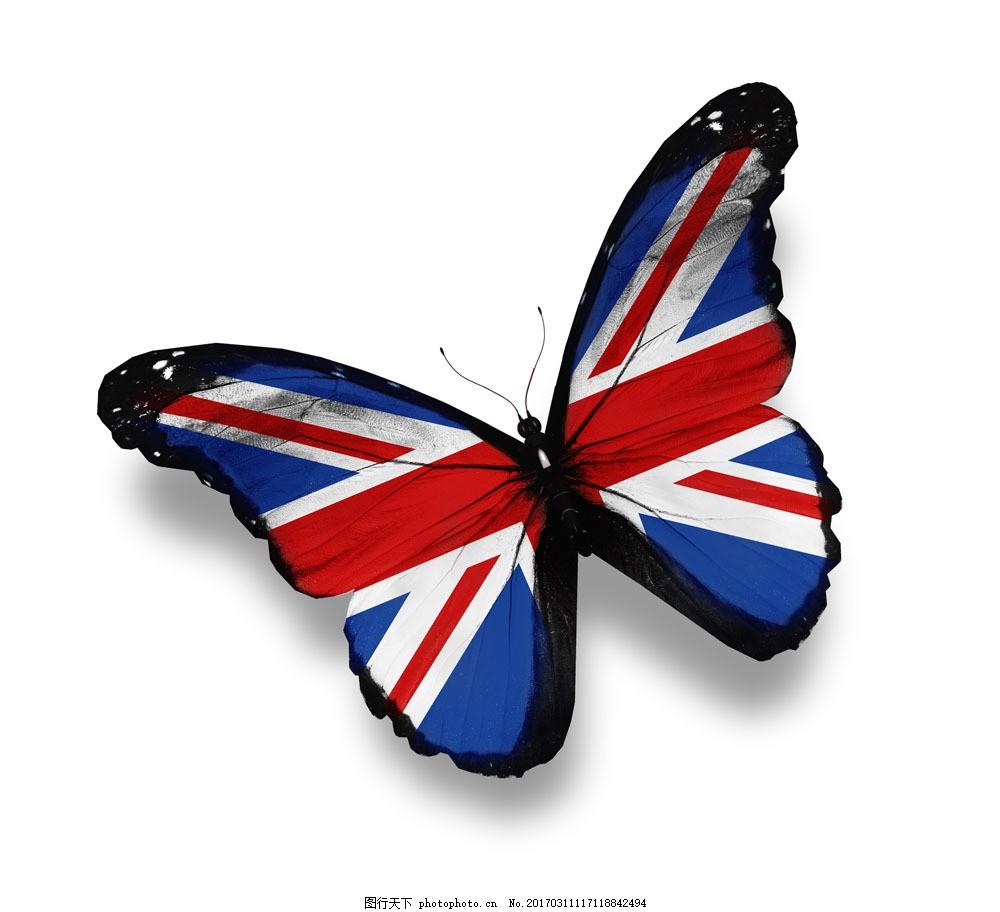 英国国旗蝴蝶图片