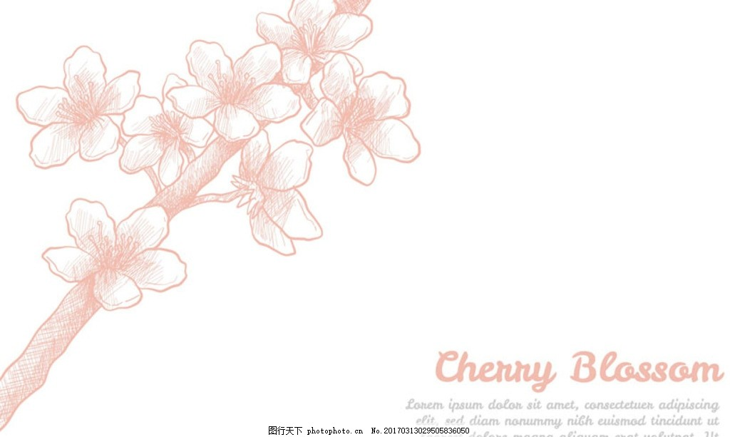淡雅手绘春季樱花