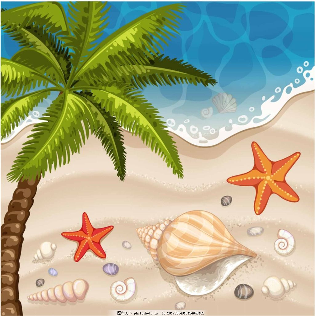 海边风光 风景 插画 大海 沙滩 贝壳 椰树