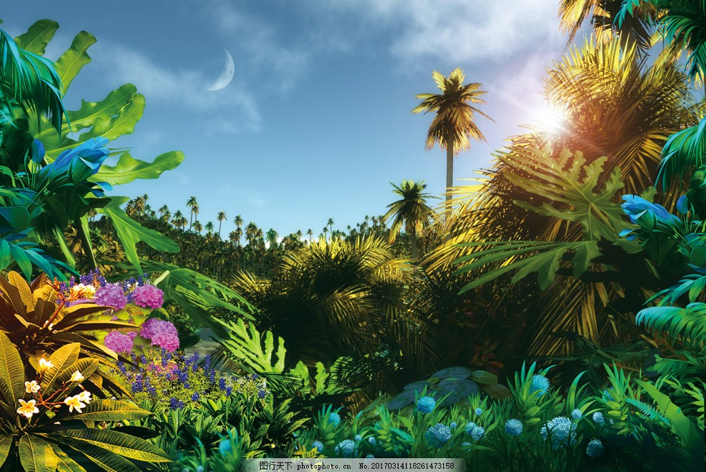 植物森林阳光合成 森林背景 背景素材 背景下载 植物 花 花瓣 绿色 小