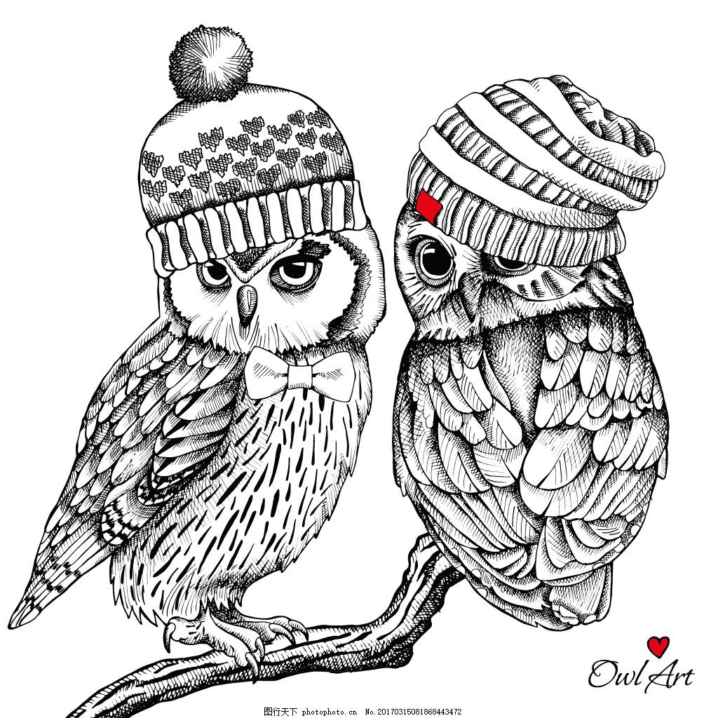 帽子猫头鹰 卡通 动物 插画