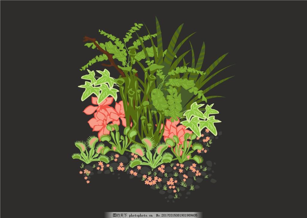 秘密花园手绘植物