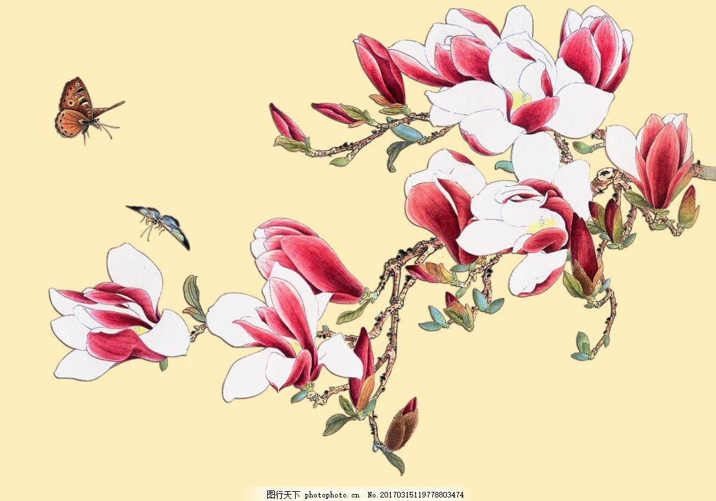 工笔画-玉兰花