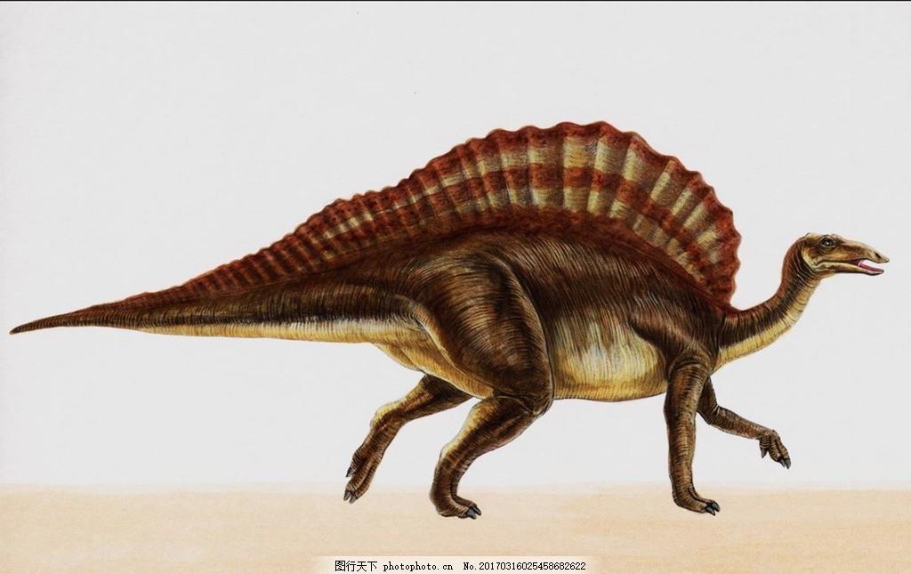 恐龙 侏罗纪 恐龙时代 恐龙绘画 恐龙手绘 恐龙复原图