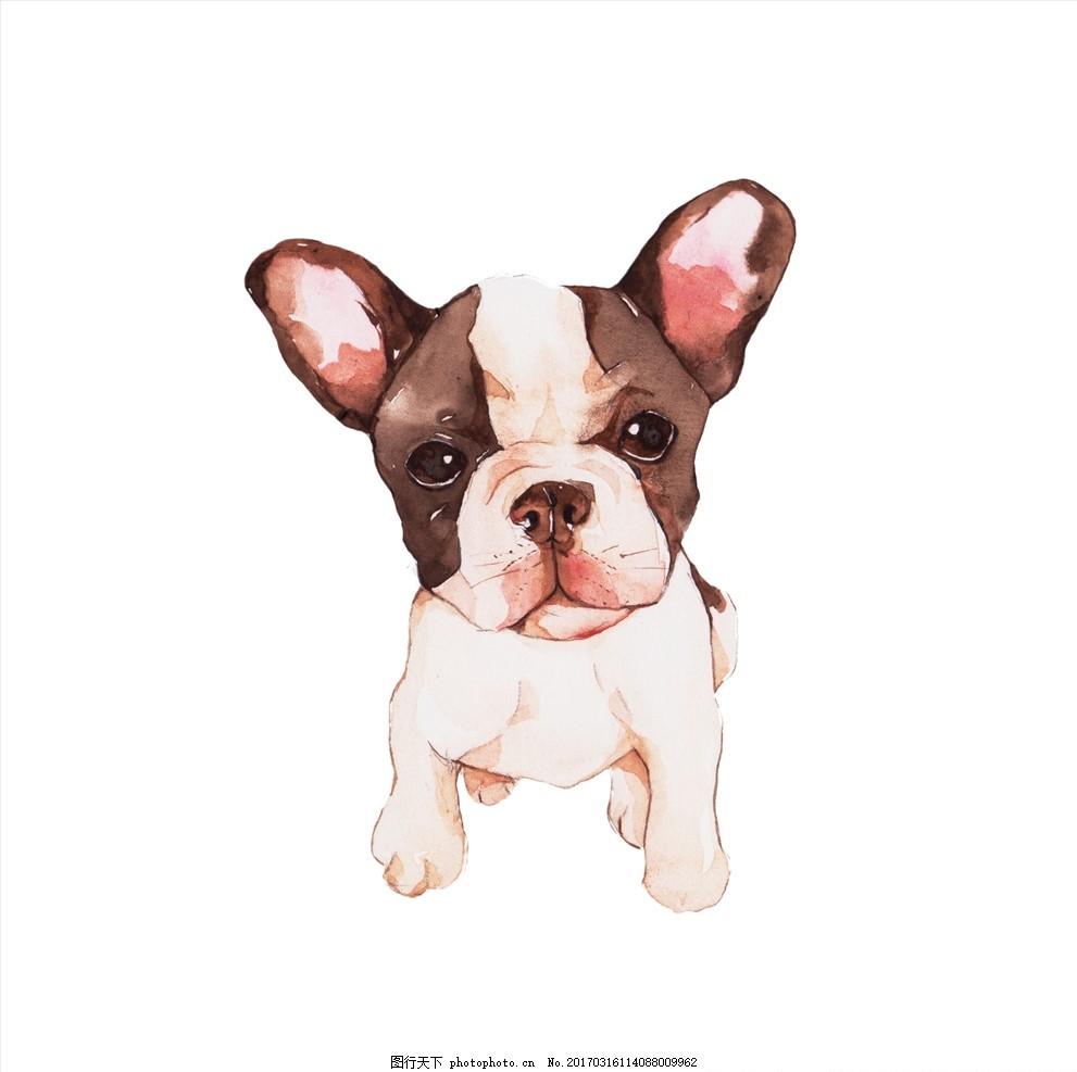 水彩狗 水彩 狗 卡通 法国斗牛犬 可爱 动物 设计 文化艺术 绘画书法