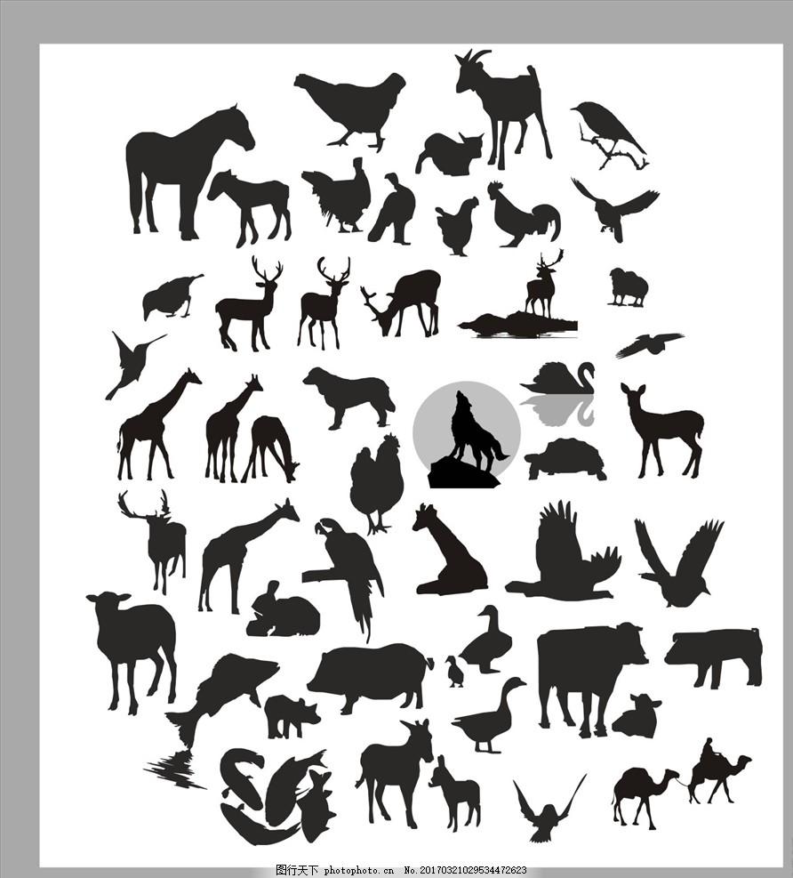 动物剪影 狼剪影 黑白图 狗剪影 鸟类剪影 鹰击长空 鸽子剪影