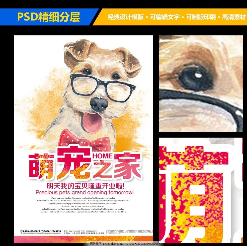 宠物店宣传海报展板设计 宠物海报 宠物美容 宠物交易 宠物买卖