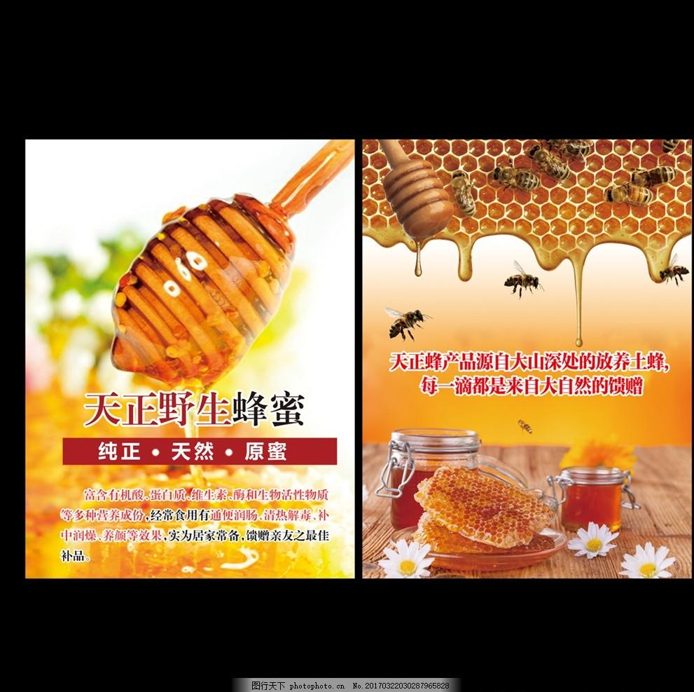 天正蜂蜜 蜂蜜 蜜蜂 蜂巢 蜂蜜广告 广告设计 设计 广告设计 展板模板
