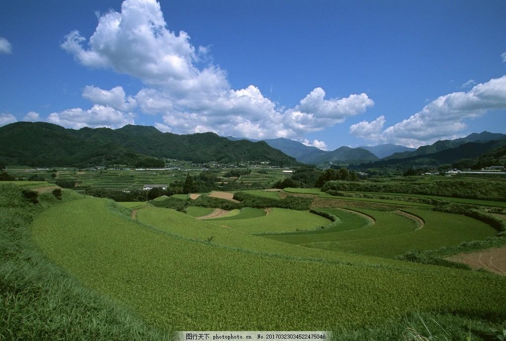 乡村田园风光 田野 农田 农村 蓝天 白云 摄影 自然风景山水田园
