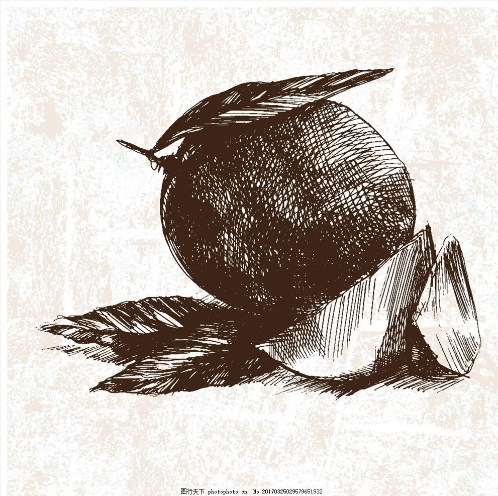 手绘芒果 水果图片 水果海报 水果店 水果超市 水果展板 水果广告