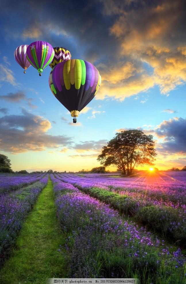 唯美 风景 风光 旅行 自然 法国 普罗旺斯 薰衣草 热气球 夕阳 落日