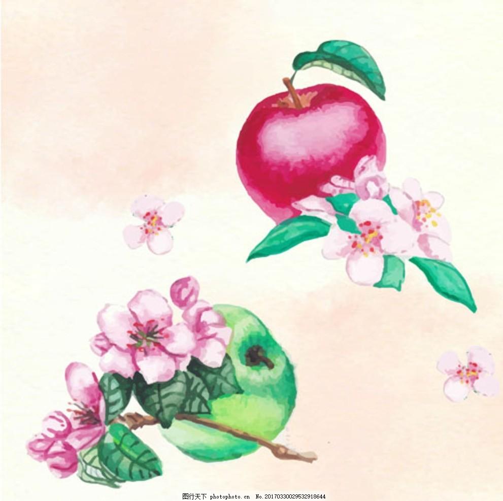 手绘水彩苹果插图