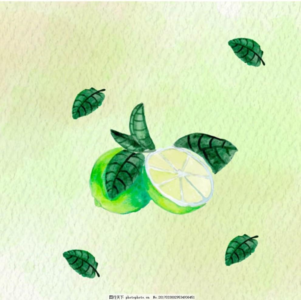 手绘水彩青柠檬插图 水果图片 水果 水果海报 水果店 水果超市 水果