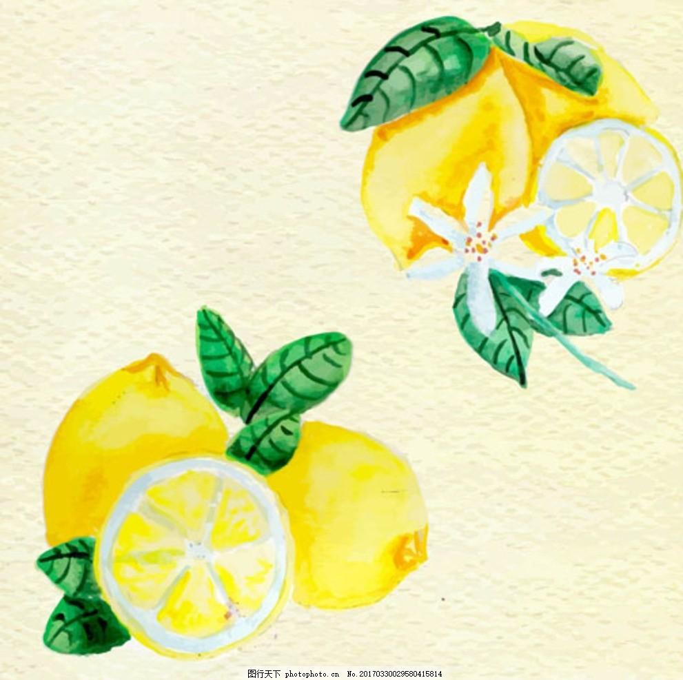 手绘水彩柠檬插图