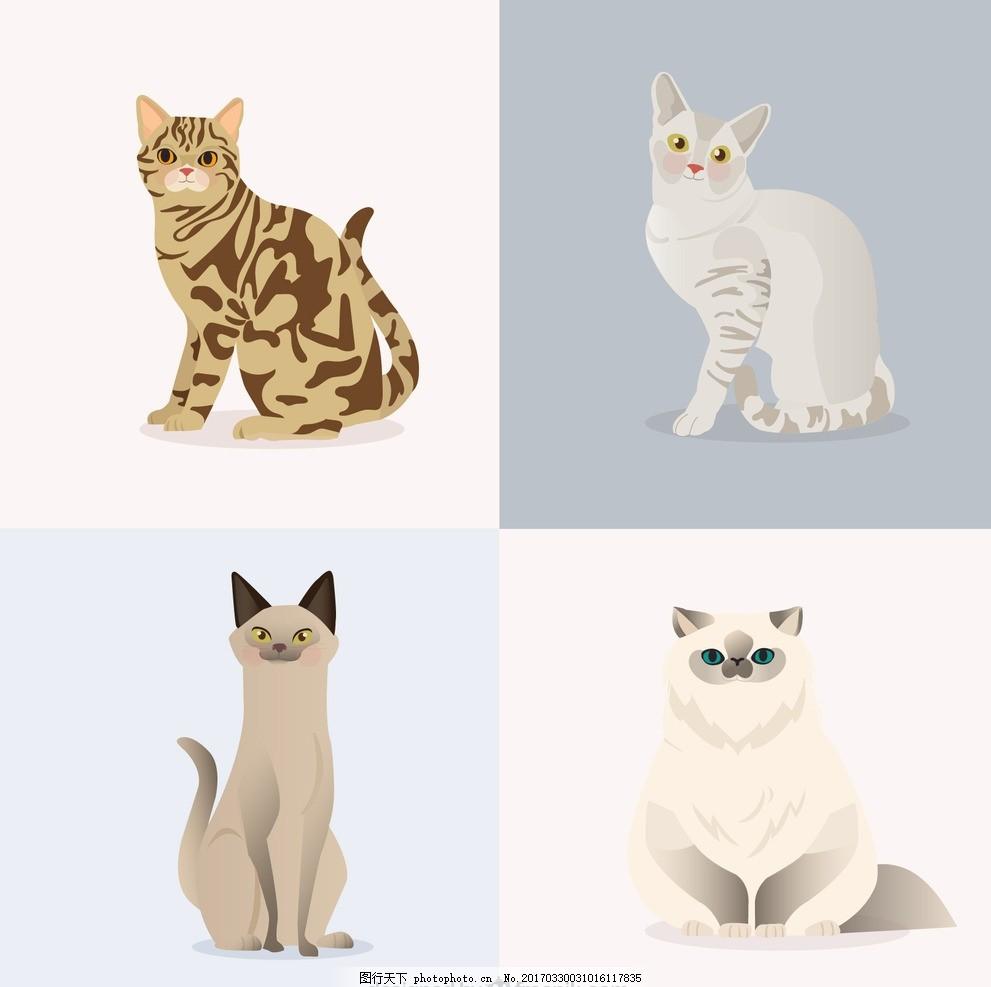 手绘宠物 绘制 动物 宠物 吉祥物 包装 猫 设计 广告设计 其他 eps